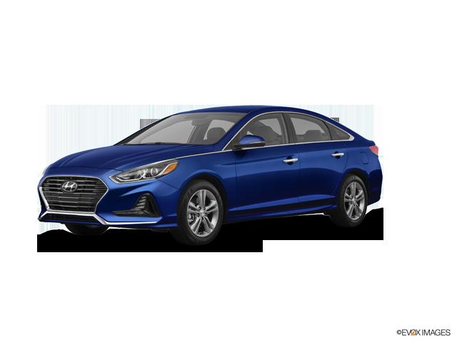 Hyundai carapina serra essay