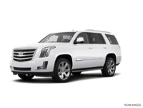 2018 Escalade Luxury