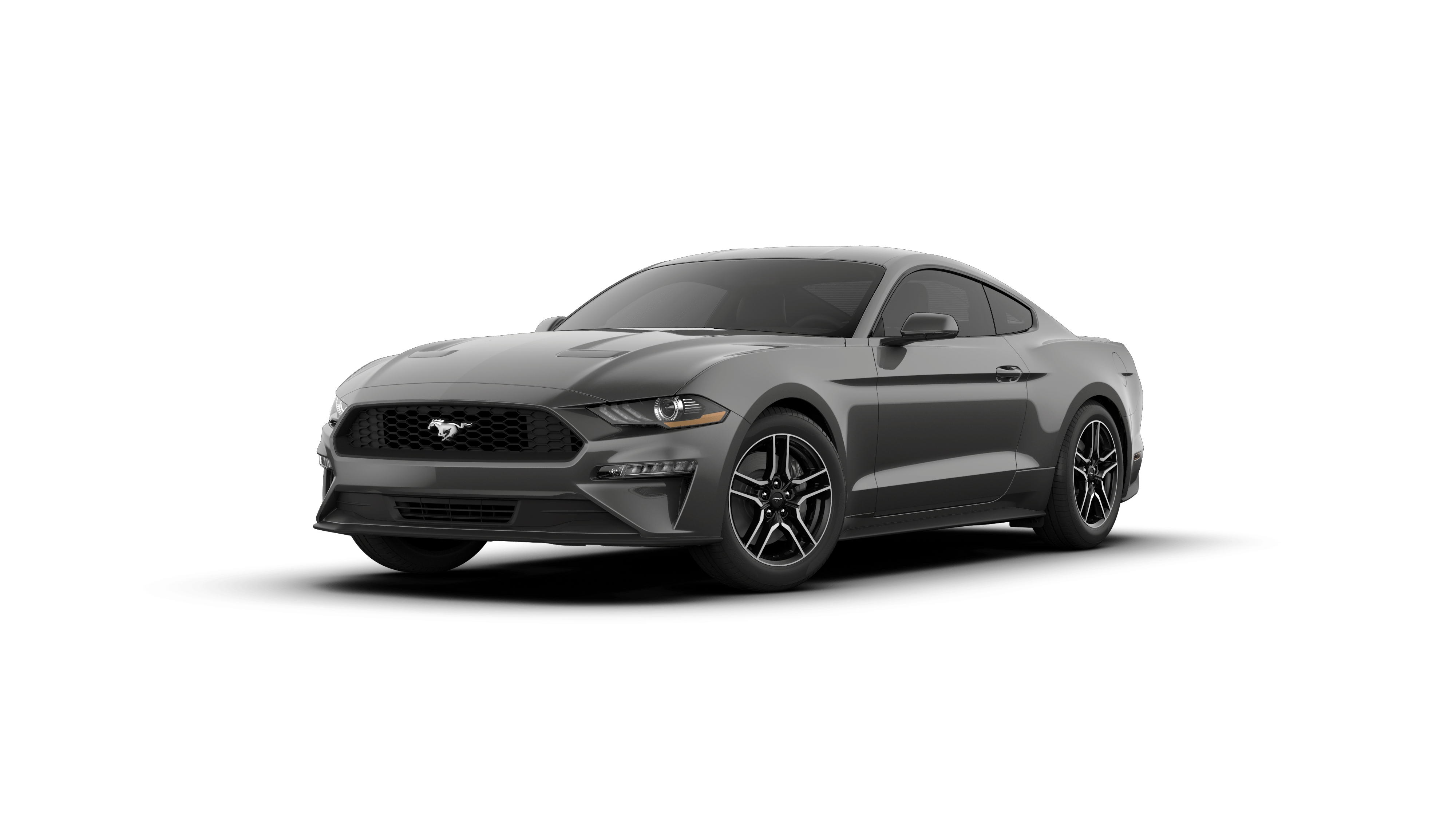 2019 Ford Mustang Vehicle Photo in Quakertown, PA 18951-1403