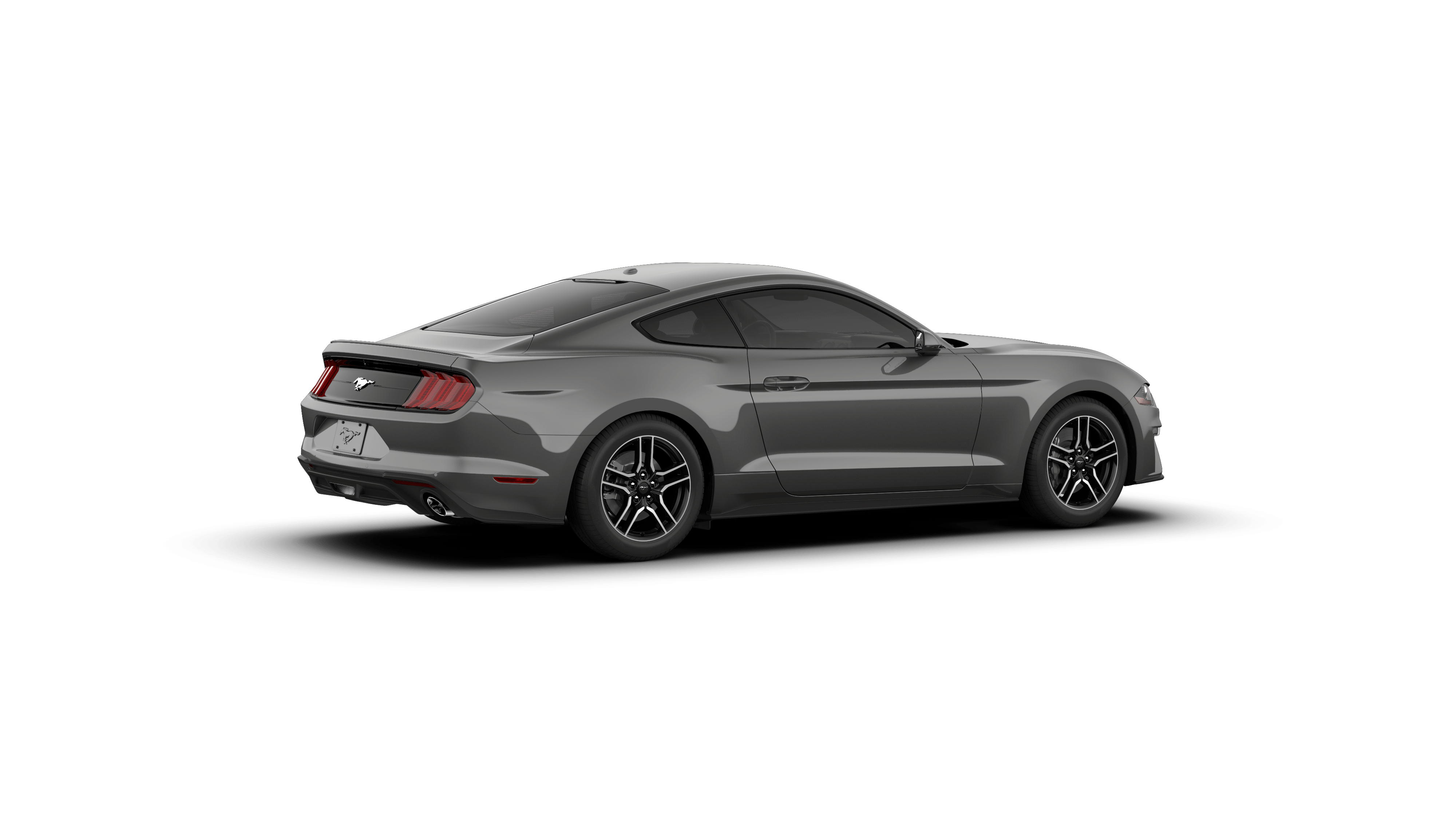 2019 Ford Mustang For Sale In Terrell 1fa6p8th4k5103911