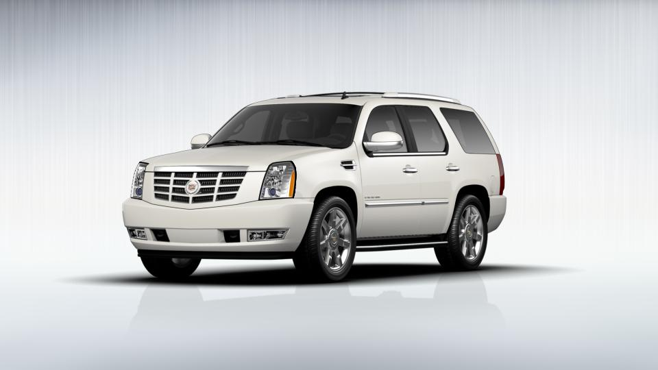 2012 Cadillac Escalade Vehicle Photo in Williston, ND 58801