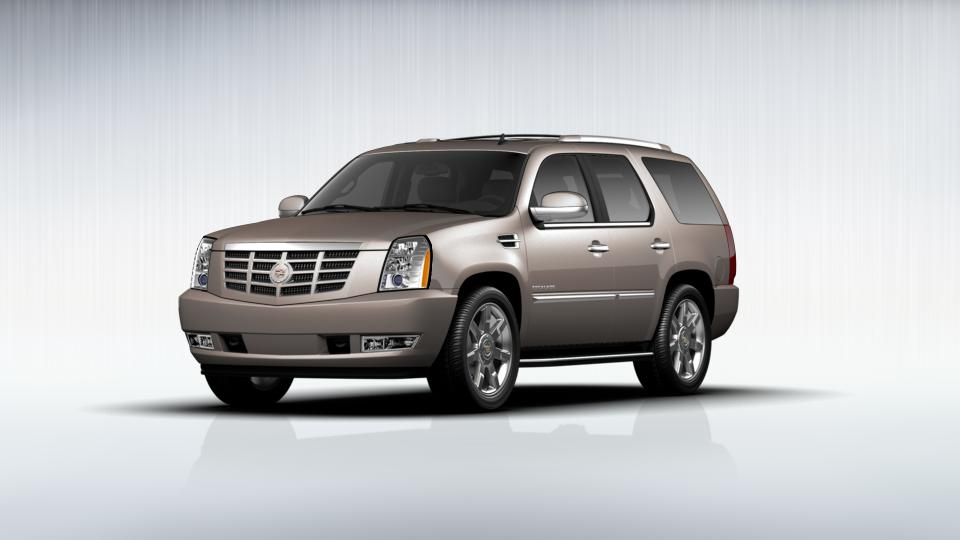 2012 Cadillac Escalade Vehicle Photo in Zelienople, PA 16063