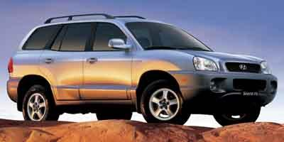 2004 Hyundai Santa Fe Vehicle Photo in Midlothian, VA 23112