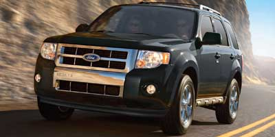 2010 Ford Escape Vehicle Photo in Owensboro, KY 42303