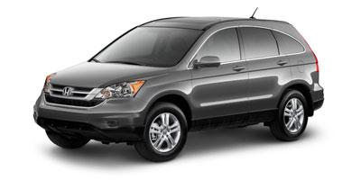 2010 Honda CR-V Vehicle Photo in Columbia, TN 38401