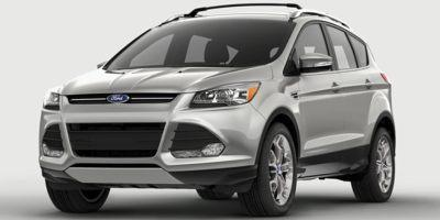 2015 Ford Escape Vehicle Photo in Decatur, IL 62526