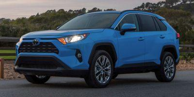 2019 Toyota RAV4 Vehicle Photo in Trinidad, CO 81082