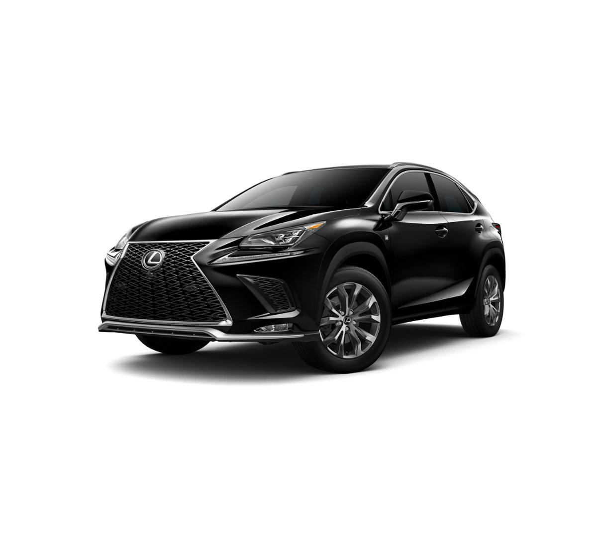 2019 Lexus NX 300 Vehicle Photo in Modesto, CA 95356