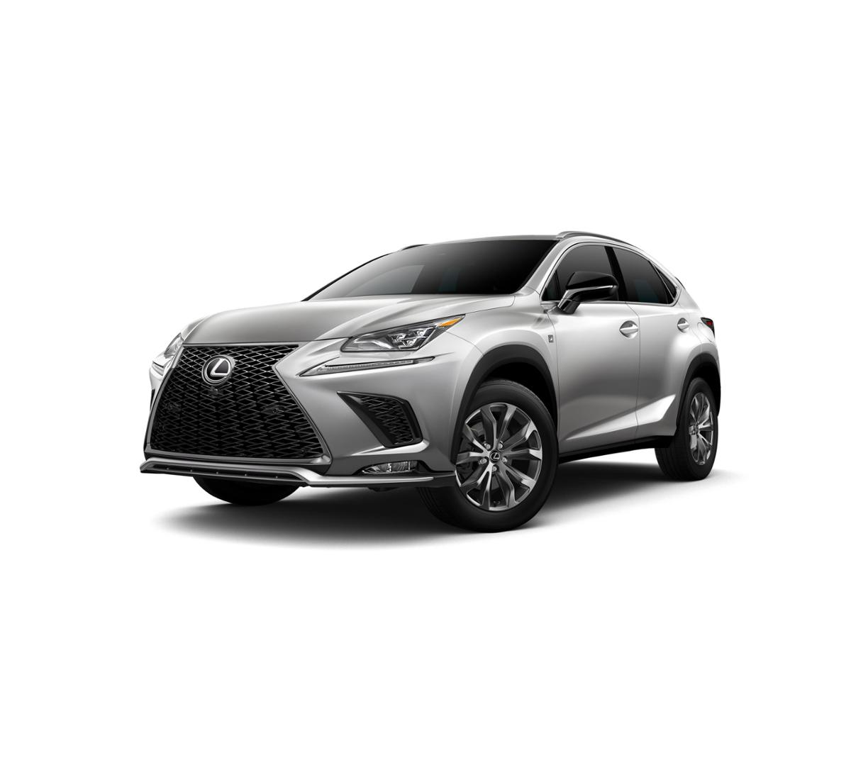 2019 Lexus NX 300 Vehicle Photo in Lakeway, TX 78734