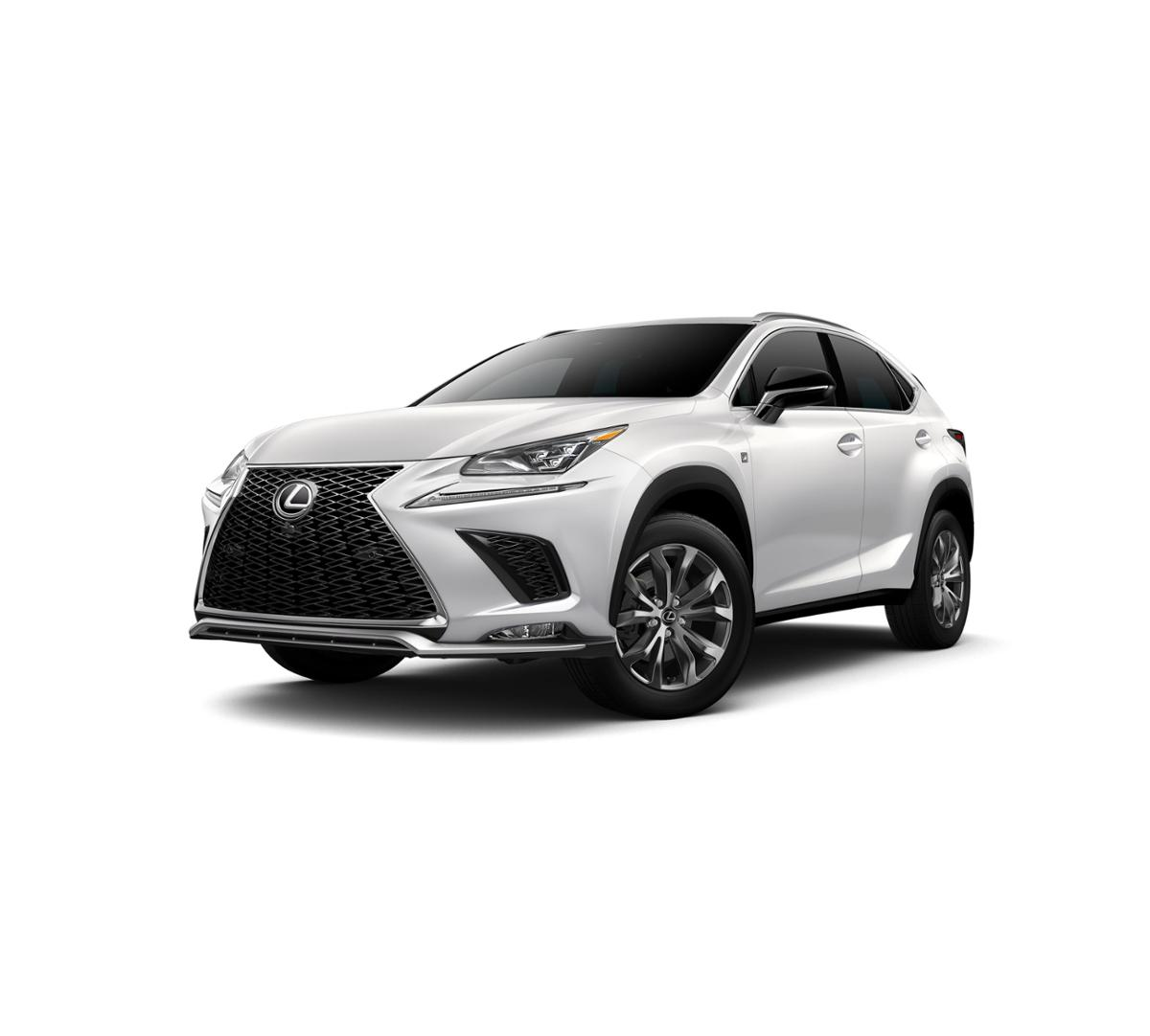 2019 Lexus NX 300 Vehicle Photo in Dallas, TX 75209