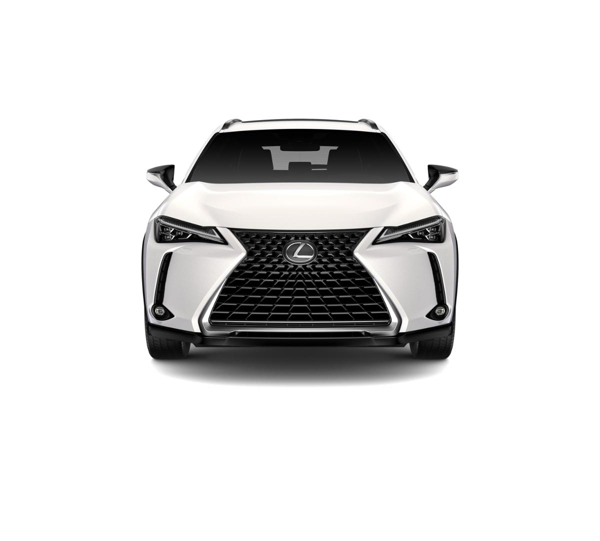 2019 Lexus UX 200 Vehicle Photo in Santa Monica, CA 90404