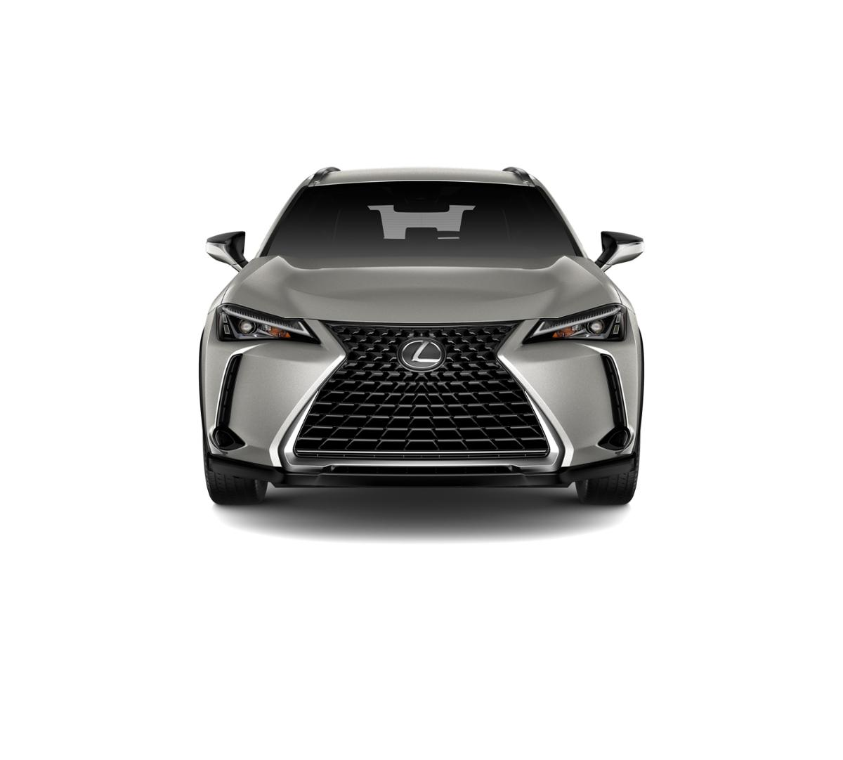 2019 Lexus UX 200 Vehicle Photo in Modesto, CA 95356