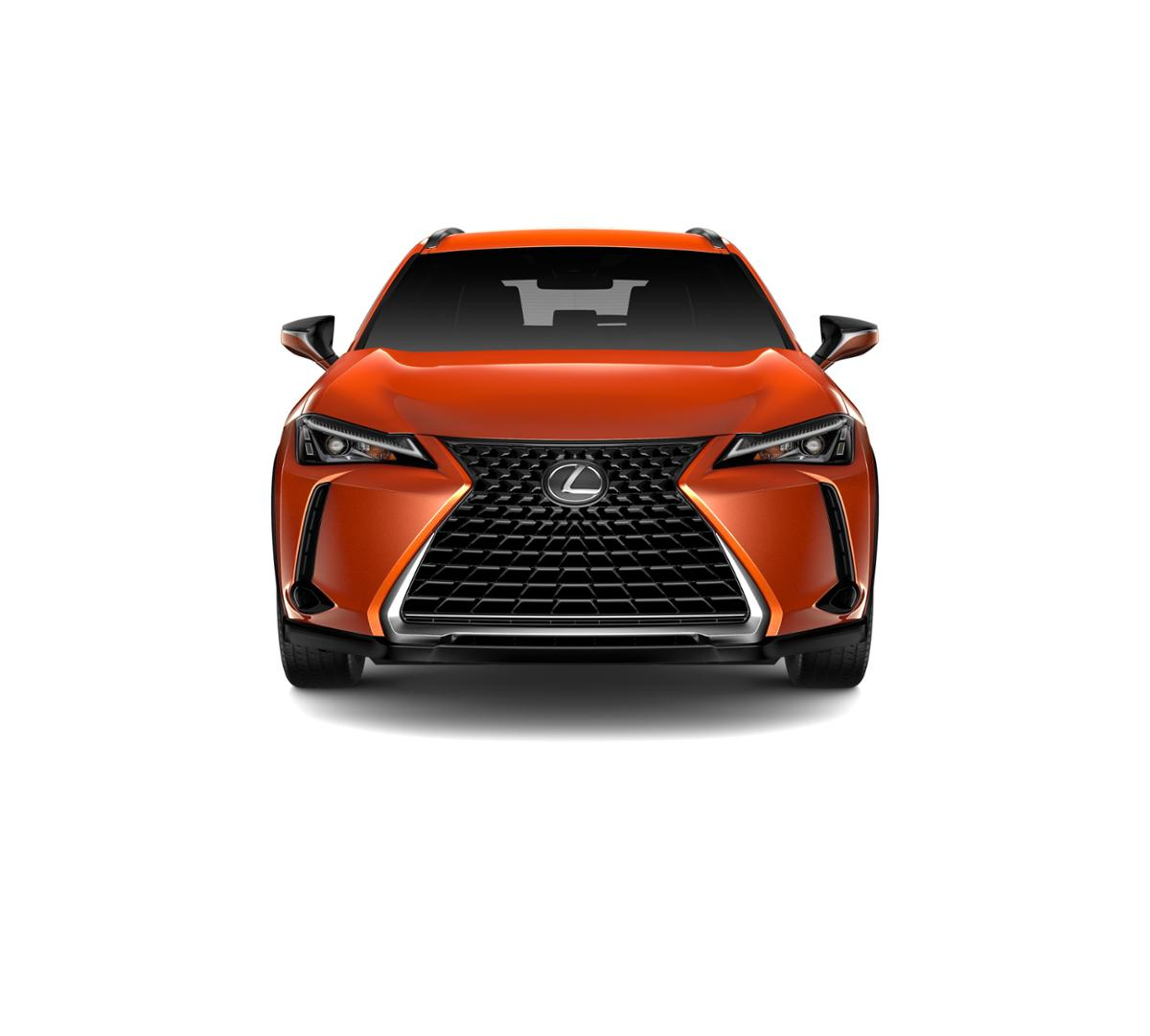 2019 Lexus UX 200 Vehicle Photo in Sacramento, CA 95821