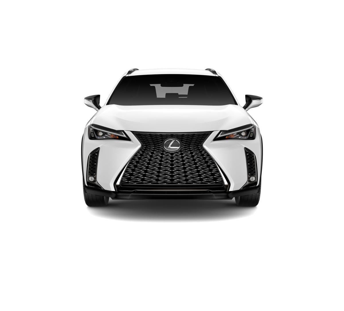 2019 Lexus UX 200 Vehicle Photo in Torrance, CA 90505