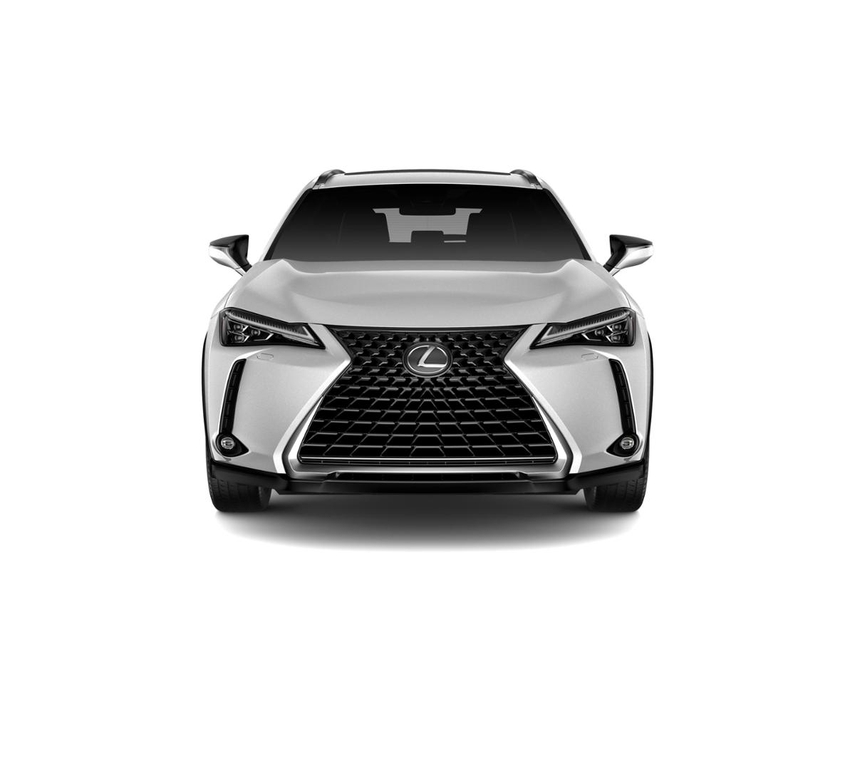 2019 Lexus UX 200 Vehicle Photo in White Plains, NY 10607