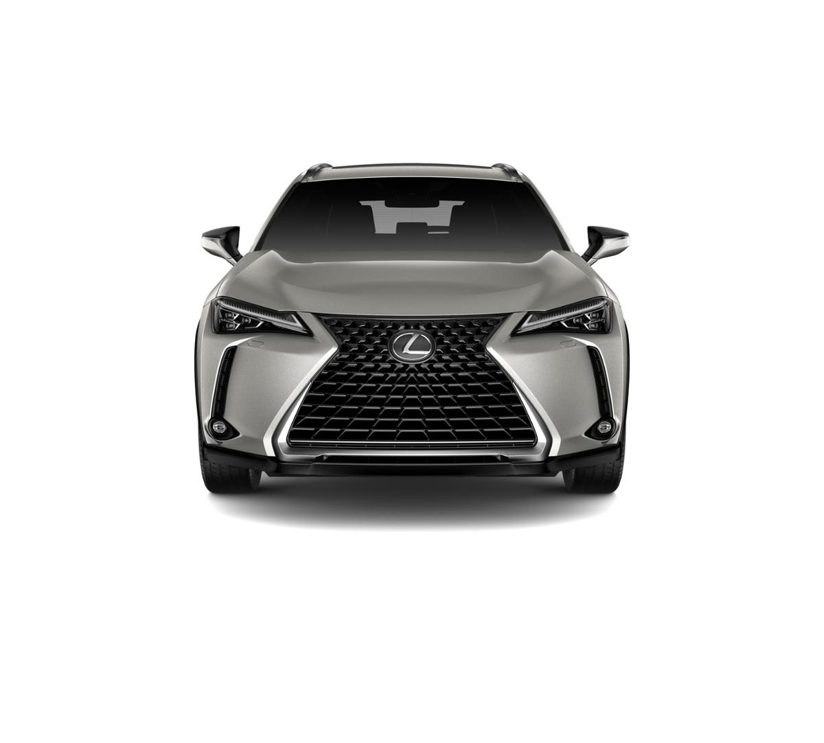 2019 Lexus UX 200 Vehicle Photo in Lakeway, TX 78734