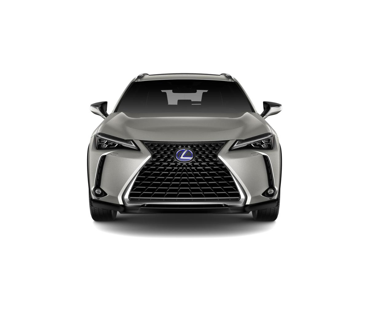 2019 Lexus UX 250h For Sale In Wayzata