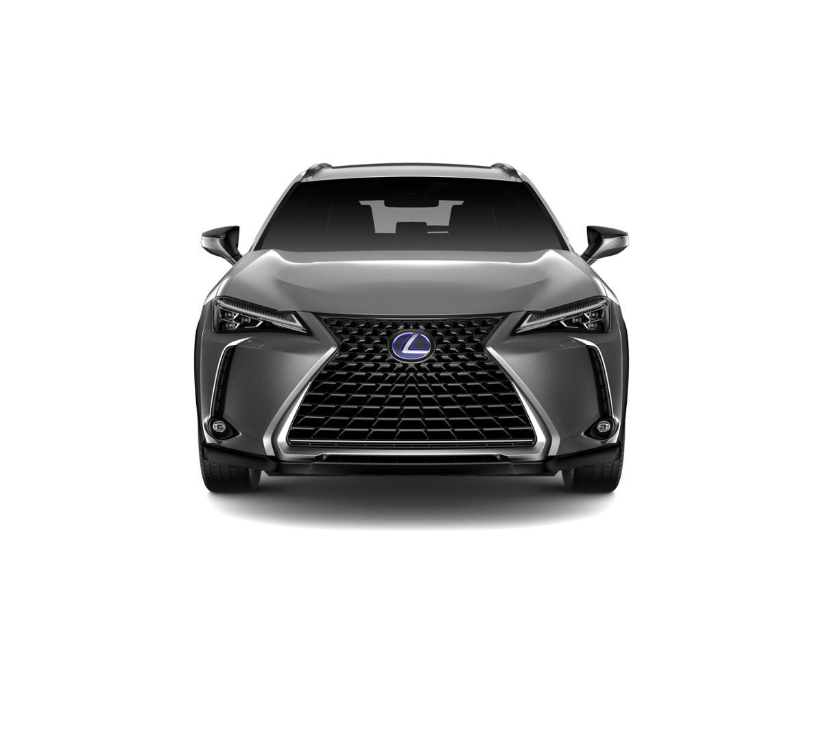 2019 Lexus UX 250h Vehicle Photo in Sacramento, CA 95821