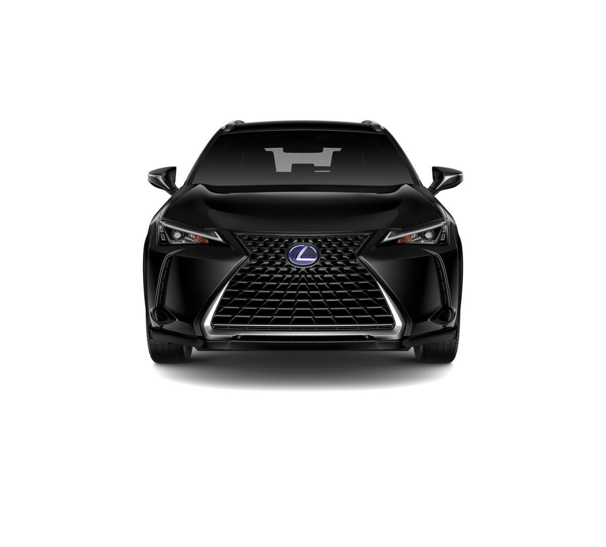 2019 Lexus UX 250h Vehicle Photo in Bedford, NH 03110