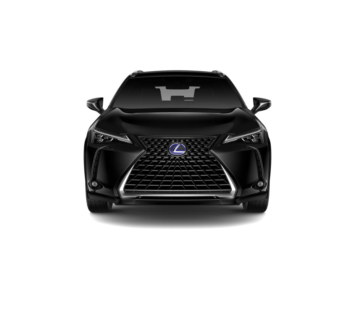 2019 Lexus UX 250h Vehicle Photo in Charlotte, NC 28212