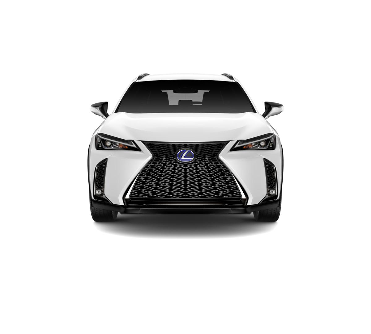 2019 Lexus UX 250h Vehicle Photo in White Plains, NY 10607