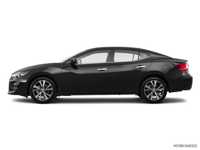 2017 nissan maxima for sale in new port richey 1n4aa6ap0hc443281 maus nissan. Black Bedroom Furniture Sets. Home Design Ideas