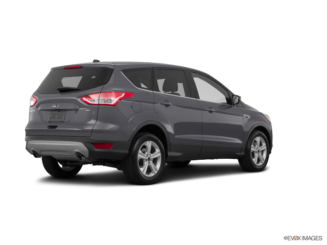 used magnetic 2016 ford escape se for sale in brandon ms rogers dabbs chevrolet. Black Bedroom Furniture Sets. Home Design Ideas