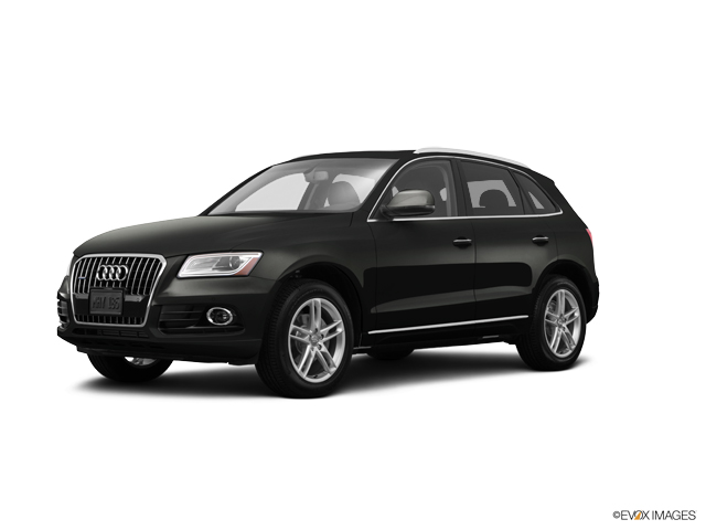 2015 Audi Q5 Vehicle Photo in Colorado Springs, CO 80905