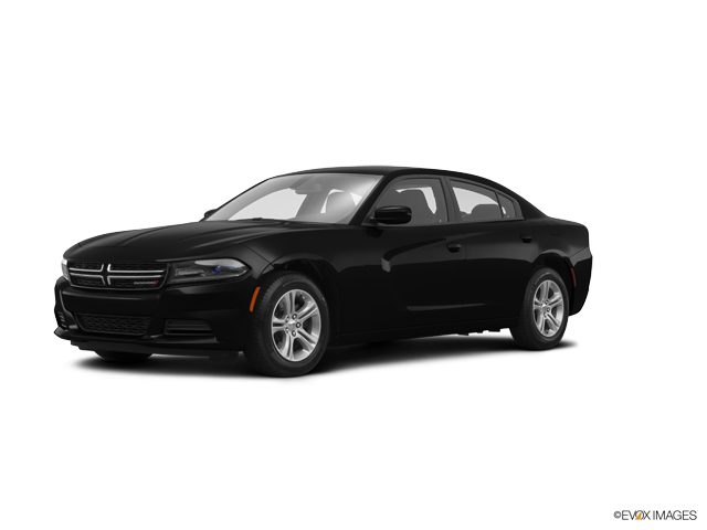 2015 Dodge Charger Vehicle Photo in Palos Hills, IL 60465
