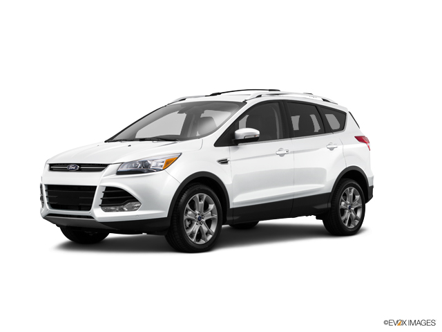 2015 Ford Escape Vehicle Photo in Colma, CA 94014