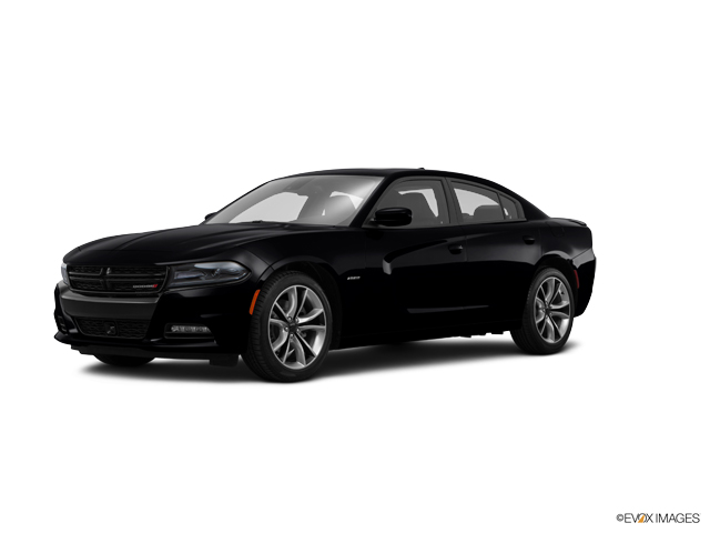 2015 Dodge Charger Vehicle Photo in Joliet, IL 60435