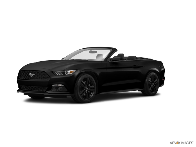 2015 Ford Mustang Vehicle Photo in Newark, DE 19711