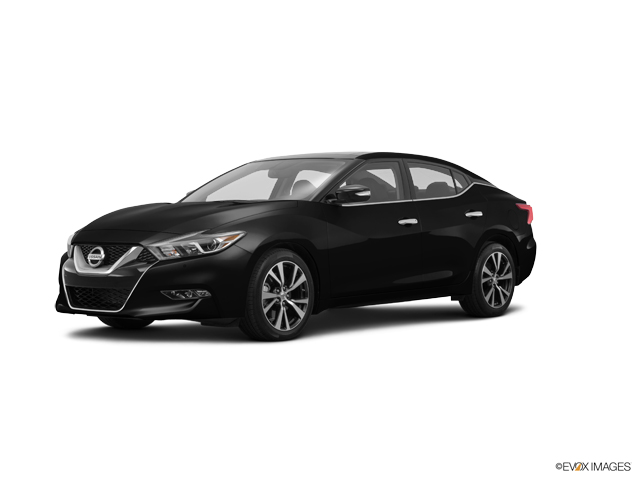 2016 Nissan Maxima Vehicle Photo in Greenville, NC 27834