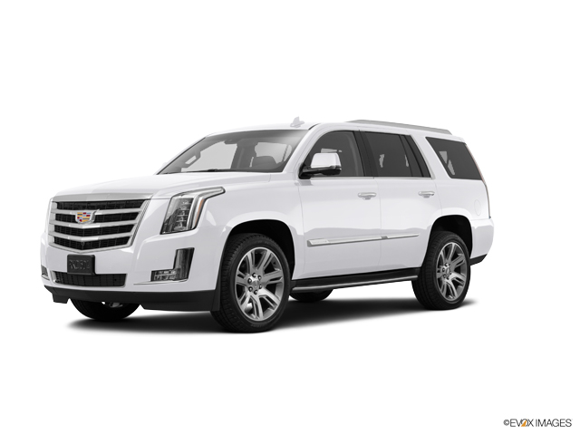 2016 Cadillac Escalade Vehicle Photo in Gainesville, GA 30504