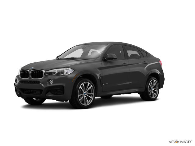 2016 BMW X6 xDrive35i Vehicle Photo in Charleston, SC 29407