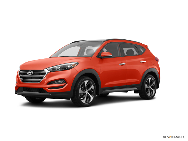 2016 Hyundai Tucson Vehicle Photo in Newark, DE 19711