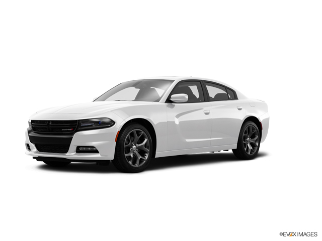 2016 Dodge Charger Vehicle Photo in Elyria, OH 44035
