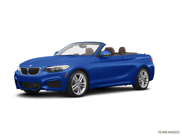 2016 BMW 228i xDrive Vehicle Photo in Trevose, PA 19053
