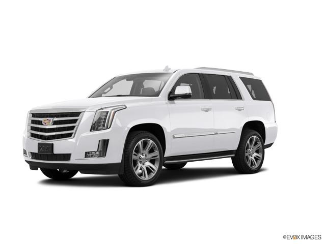 2017 Cadillac Escalade Vehicle Photo in Gainesville, GA 30504