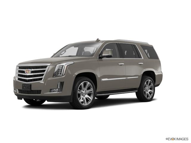 2017 Cadillac Escalade Vehicle Photo in Colorado Springs, CO 80905