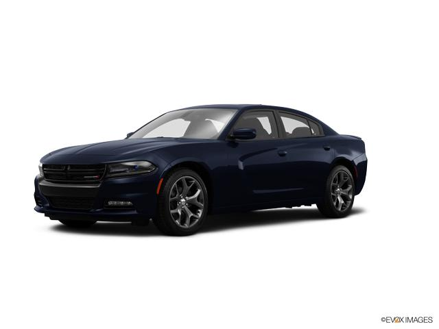 2017 Dodge Charger Vehicle Photo in Akron, OH 44320