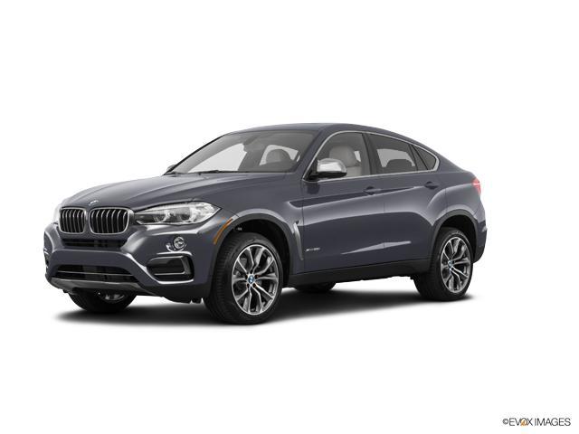 2018 BMW X6 xDrive35i Vehicle Photo in Charleston, SC 29407