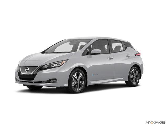 2018 Nissan LEAF Vehicle Photo in Bedford, TX 76022