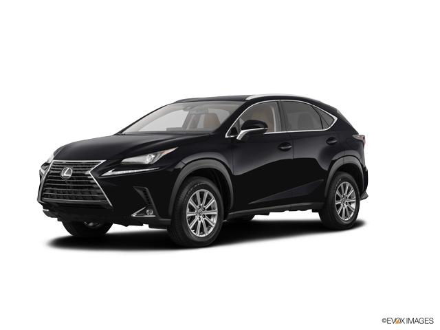 2019 Lexus NX 300 Vehicle Photo in Appleton, WI 54913