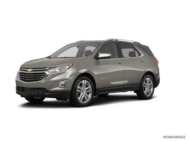 2019 Chevrolet Equinox Vehicle Photo in Chelsea, MI 48118