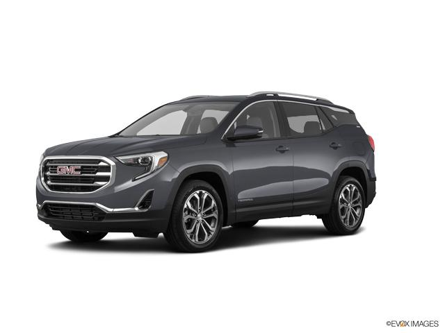 2019 GMC Terrain Vehicle Photo in Madison, WI 53713