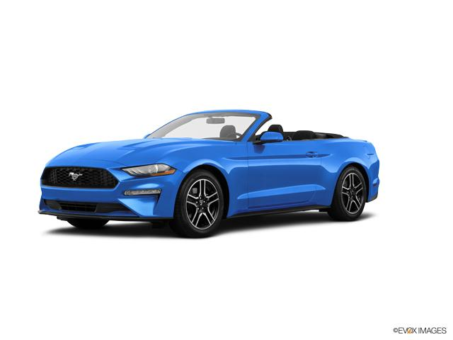 2019 Ford Mustang Vehicle Photo in Oshkosh, WI 54901-1209