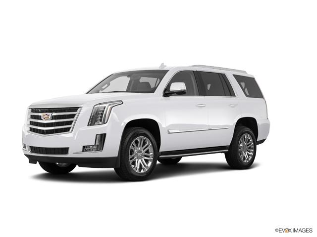 2019 Cadillac Escalade Vehicle Photo in Neenah, WI 54956