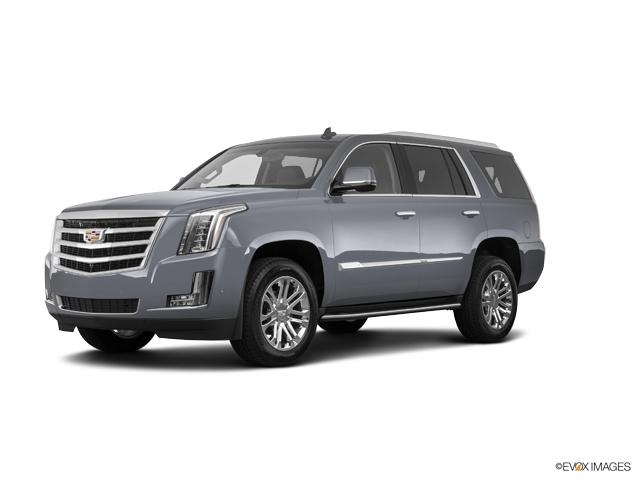 2019 Cadillac Escalade Vehicle Photo in Appleton, WI 54914