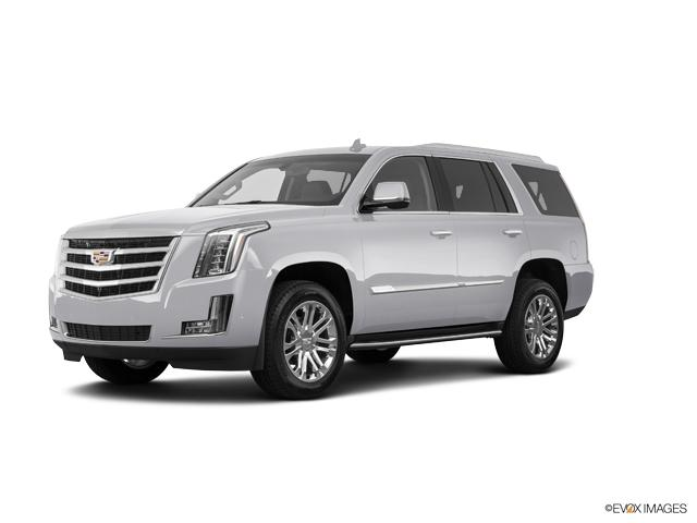 2019 Cadillac Escalade Vehicle Photo in Grapevine, TX 76051